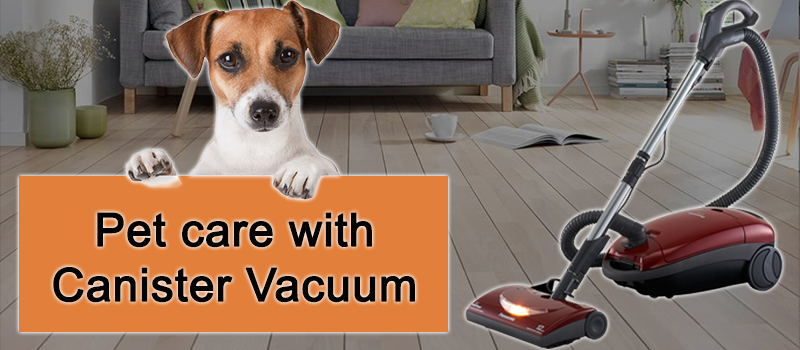 How to remove Pet Hair with Canister Vacuum Cleaner Image