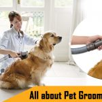All about Pet Grooming Vacuum image