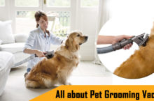Complete info on Pet Grooming Vacuum – Things to consider before buying